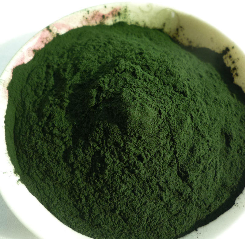 ISO factory supply 100% pure chlorella powder