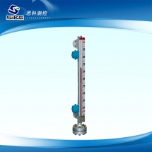 Top mounted magnetic float liquidometer