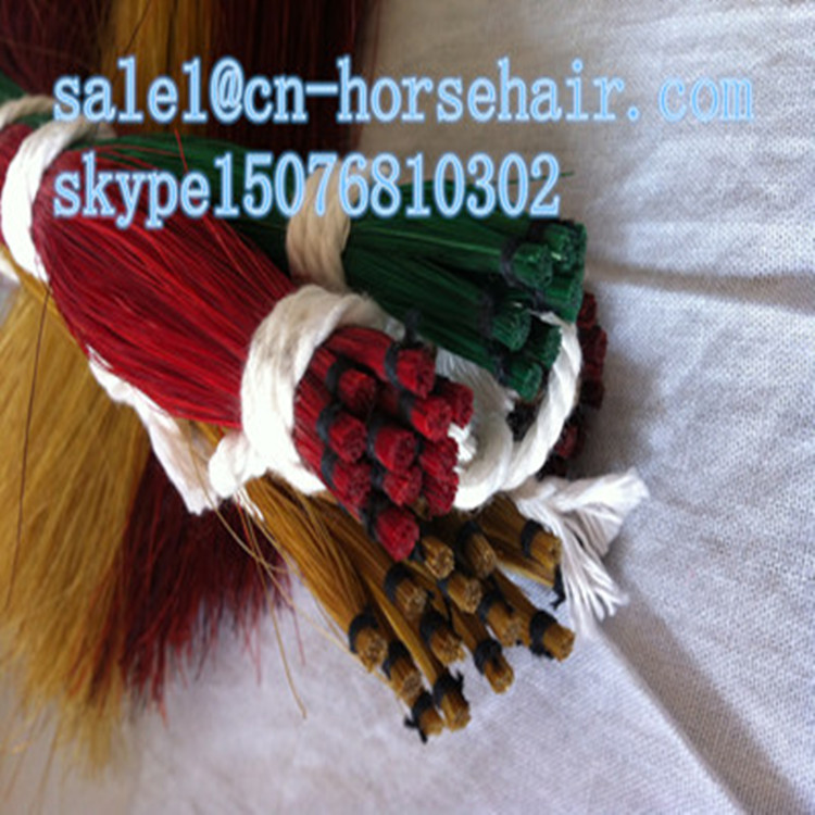 Dyeing horsetail