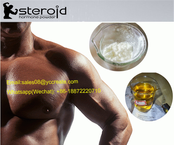 CAS 481-29-8 Epiandrosterone Androgen Supplement Epi-Andro For Reducing Muscle Moisture