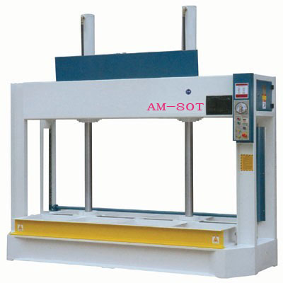 AM-80T cold press machine
