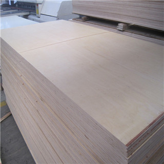 Finnish birch veneer plywood with phenolic glue