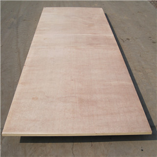 High quality 6ft*10ft industrial large size plywood