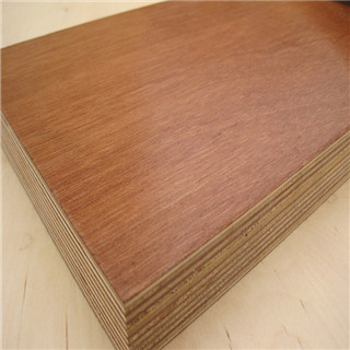 Good wear resistance plywood with UV painting