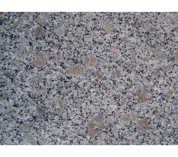 Best price Pearl Flower Granite Stone manufacturer