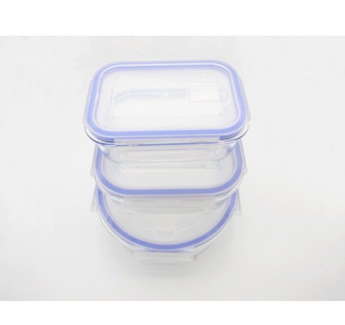 Borosilicate Glass Food Container With BPA free Lid