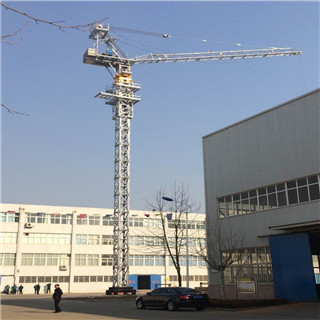 Luffing Tower Crane Made In China for Sale