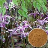Domestic senior  company of Horny Goat Weed Extract, Horny