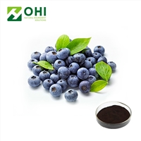Domestic senior  company of Bilberry extract good word of m