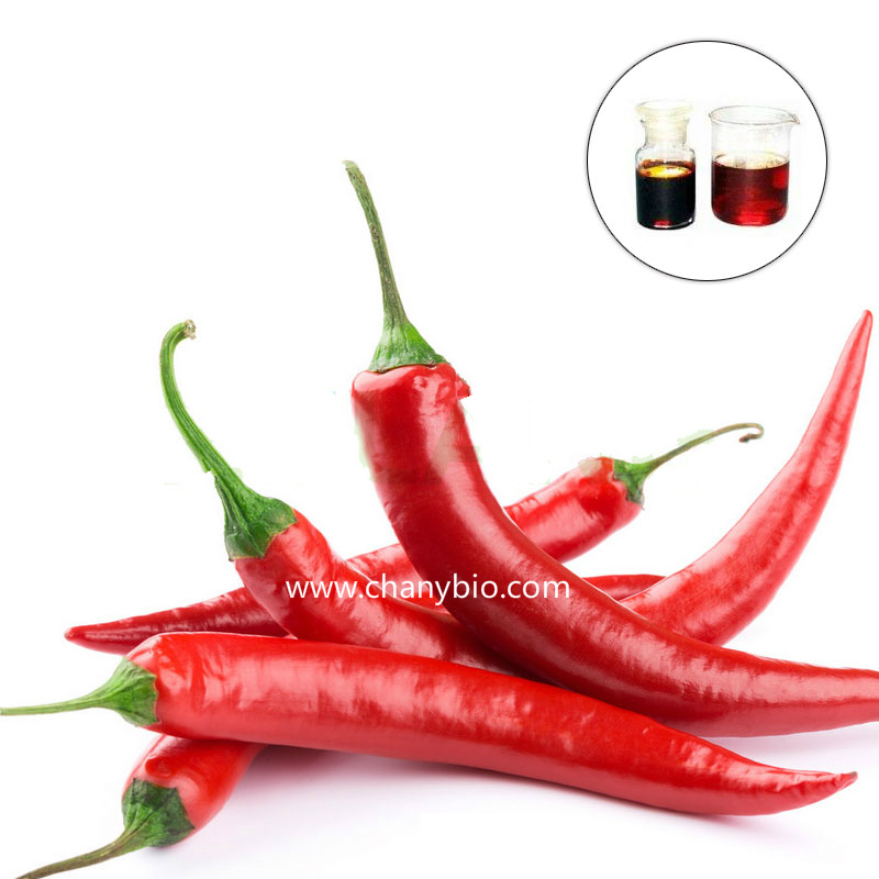 Capsicum Extract  chilli extract Chilli Pepper Extract Capsaicin