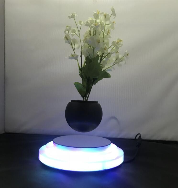 Three trapezoidal colorful glowing pedestal magnetic floating air bonsai tree