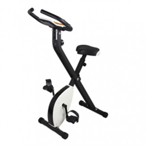 X-Bike Exercise Bike