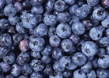 Emerging Bilberry extract has good market prospects in,it i