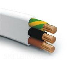 300/500V,Copper Conductor PVC Insulated PVC Sheathed Flat Wire