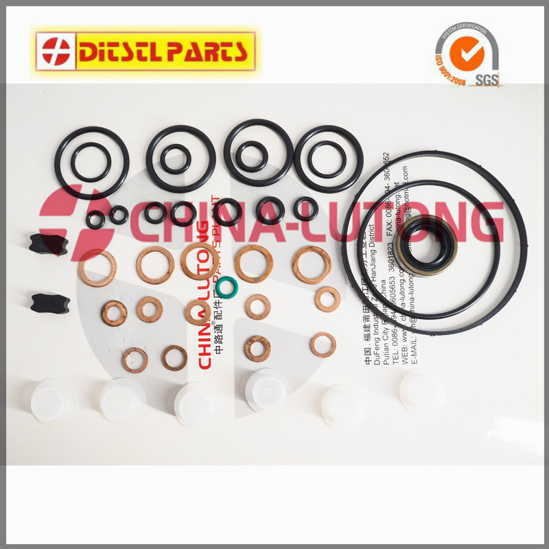 800647 Pump Repair Kits Ep/Ve 17*28*7 K608011/11-K245 for NISSAN TD FUEL PUMP, KIA ZEXEL VE PUMPS, G