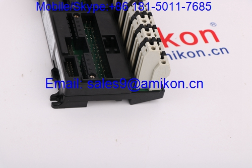 IC694DSM324	GE/Fanuc	Controllers & IO Modules