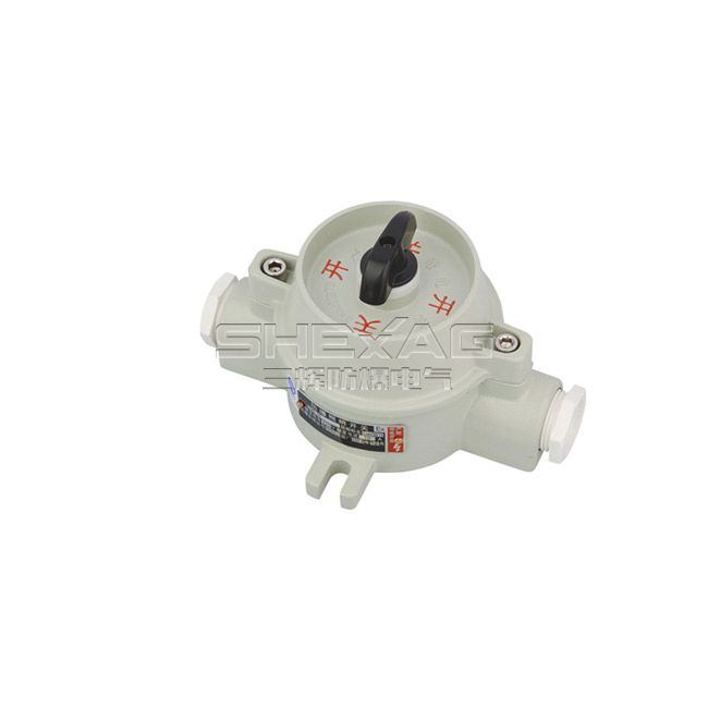 explosion-proof illumination switch(d II B,de II B) SH-BZM-10