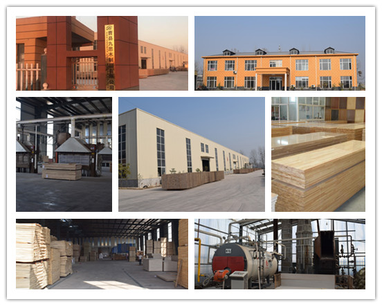 Cao County Jiusi Woods Co.,Ltd