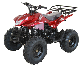 atv cart/motor  125cc