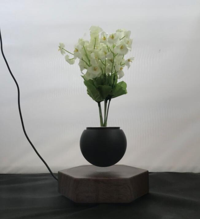 magnetic floating leivtate bottom air bonsai tree potted