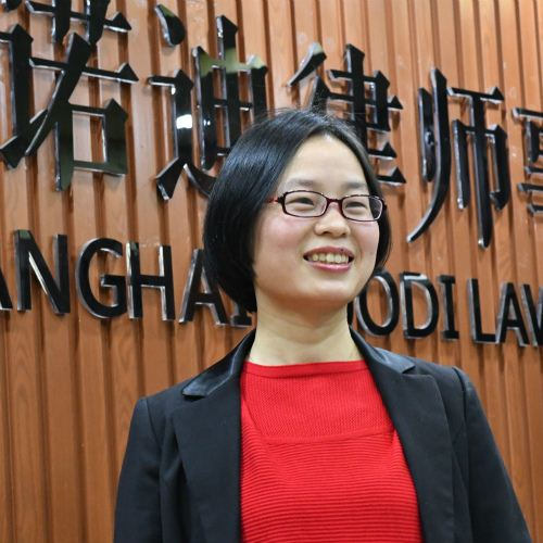 chinese financial lawyer, flashing with high quality