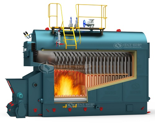 DZL Biomass steam boiler