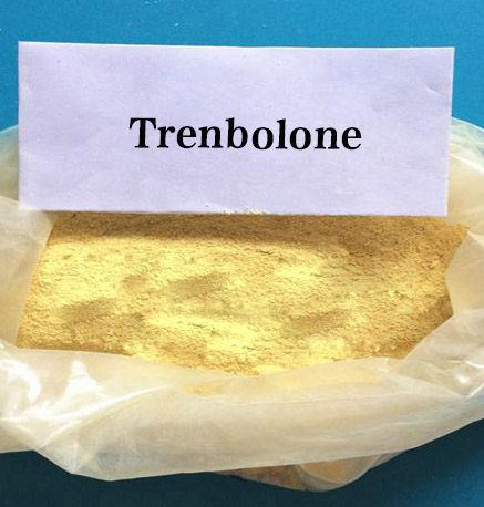 Anabolic Raw Steroid Powders Trenbolone Base 98% CAS 10161-33-8 for Muscle Building