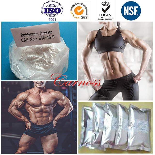 Raw Steroid Hormone Muscle Building Sterioids 846-46-0 Anabolic Boldenone Acetate