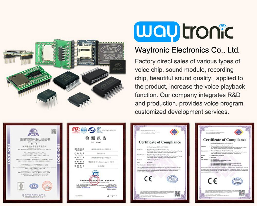 We are trying to do better Sound IC/ Module and service for