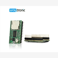 Only Sound IC/ Module gives you everything that you need to