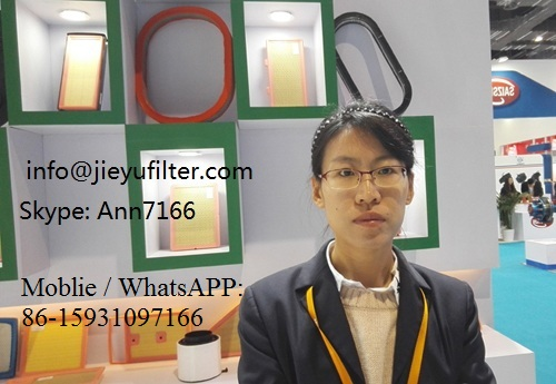 air filter car, European Quality Made in China