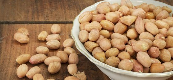 Cheap Cashew Nuts,Betel Nuts,Cola Nuts,Pistachio Nuts,Peanuts,Hazelnuts,Almond Nuts,Sunflower Seeds