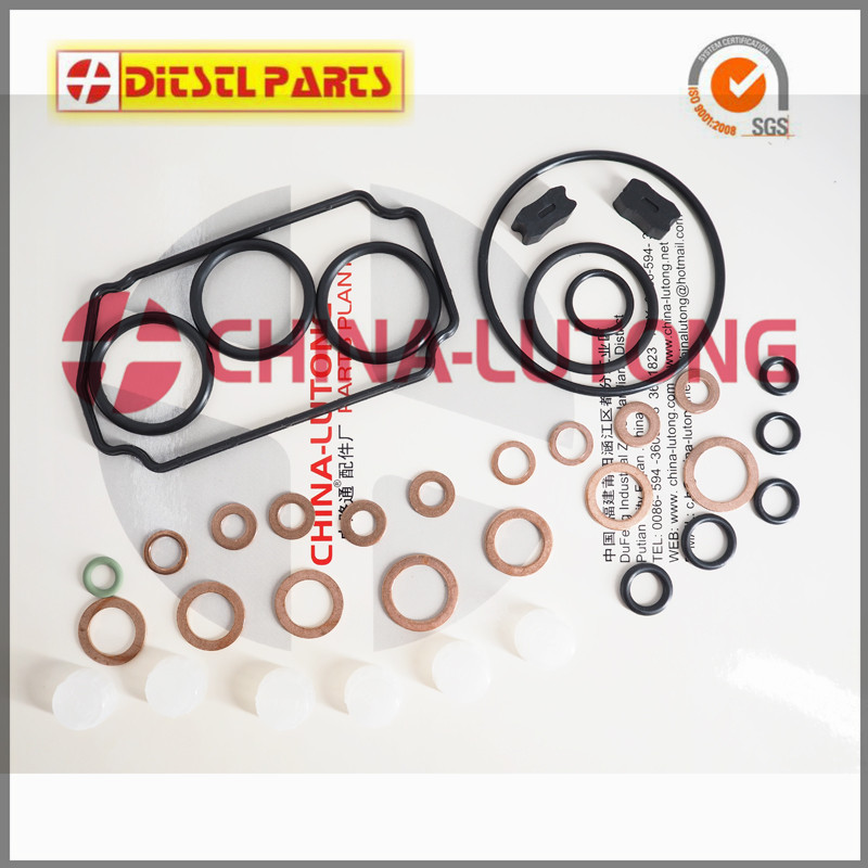 common rail injector repair kits Z 146600-1120 B 9 461 610 423 Fl 800600 for Ve Pump Parts Replace for Zexel Pump