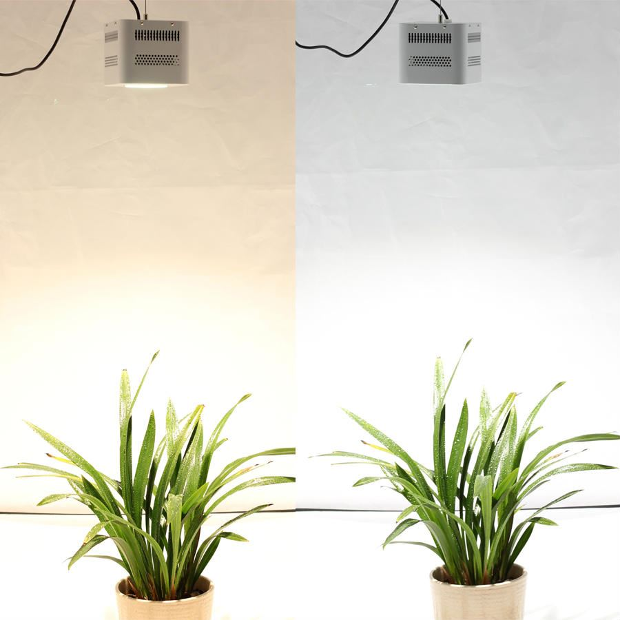 Hydroponic lamp is 100% new and authentic, reliable quality