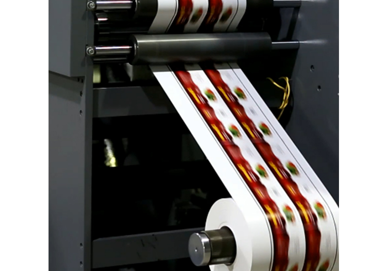 GPPE Masking Paper Off-line Flexographic Printing Machine