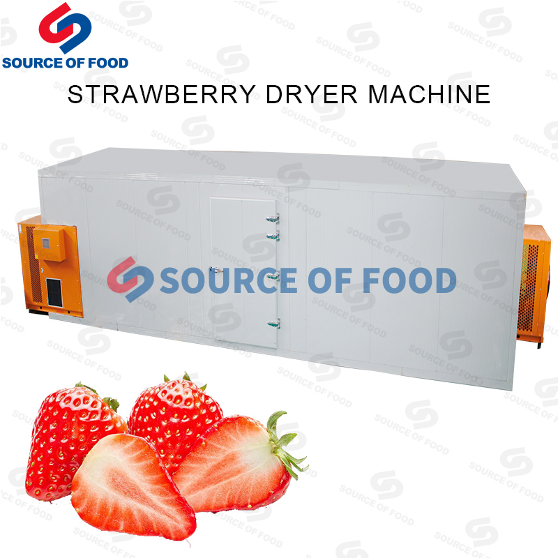 Strawberry Dryer Machine