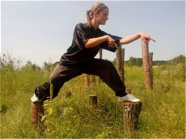 Chinese Martial arts School training