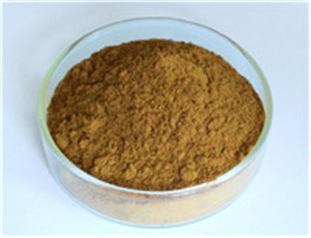 Ginkgo Biloba Extract,Ginkgo Biloba Extract Supplier,Ginkgo Biloba Extract Powder,yellow-brown Ginkgo Biloba Extract