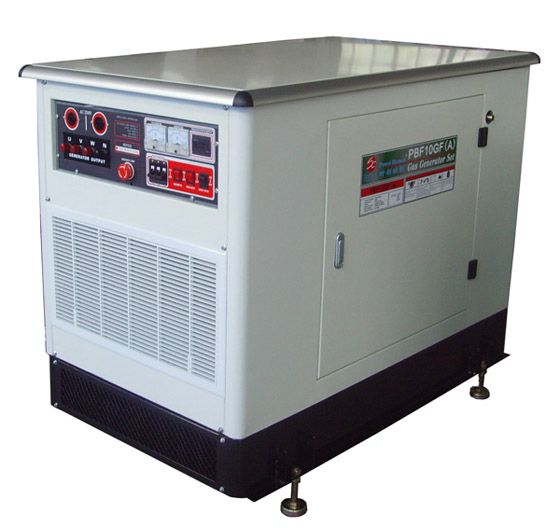Natural Gas/LPG generators