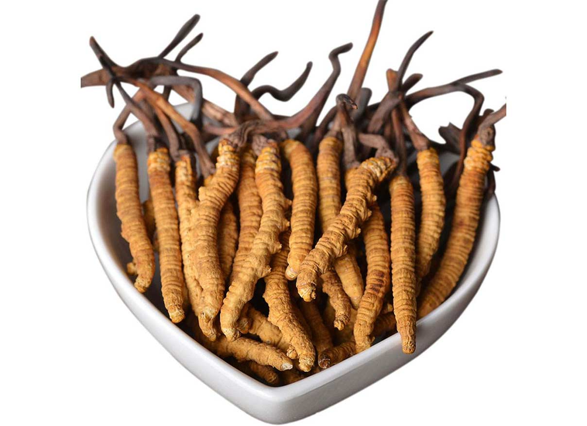 Edible Cordyceps powder