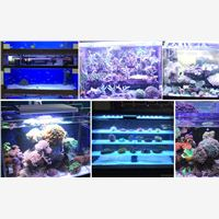 Herifidimmable led aquarium light,preferred choice for you