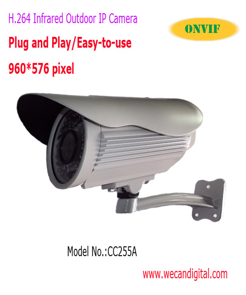 H.264 650TVL CCD Outdoor Infrared IP Camera