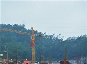 QTZ100(TC6513)Trustworthy Self Erecting FIxed Hydraulic Construction Building Tower Crane