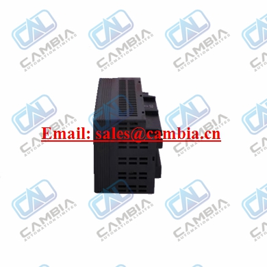 What kind Products   IC200EBI001 we provided