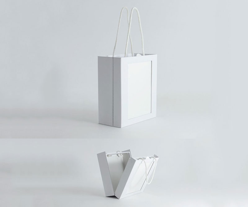 Paper Carrier Bag OEM Handbag