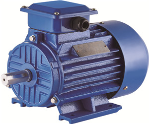 Y2 Electric Motor Three Phase Alternating Motor