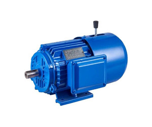 YEJ Series Magnetic Braking Three Phase Induction Motor