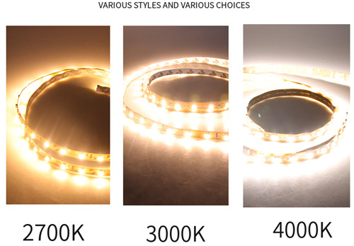 LED high brightness and high Ra 5050 bare board low voltage light strip  wholesale