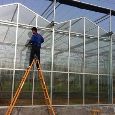Good Price For Commercial Glass Greenhouse
