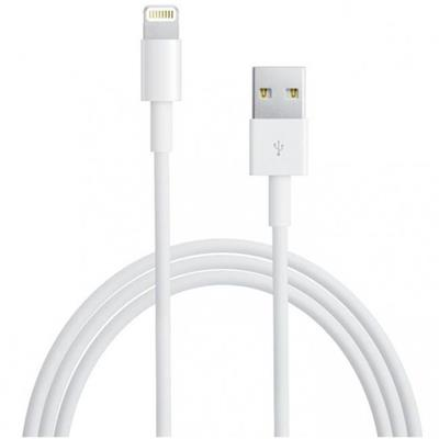 Apple OEM Lightning Cable Bulk
